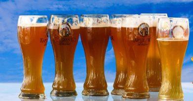 Produção cervejeira curso ensina de forma prática