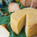 Curso de queijos vegetais fermentados probióticos