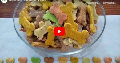 Biscoito para cachorro receita caseira E-book