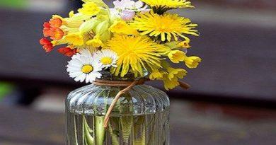 Arranjos de flores naturais curso para iniciante